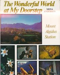 cover image of The Wonderful World at My Doorstep by Mona Anderson