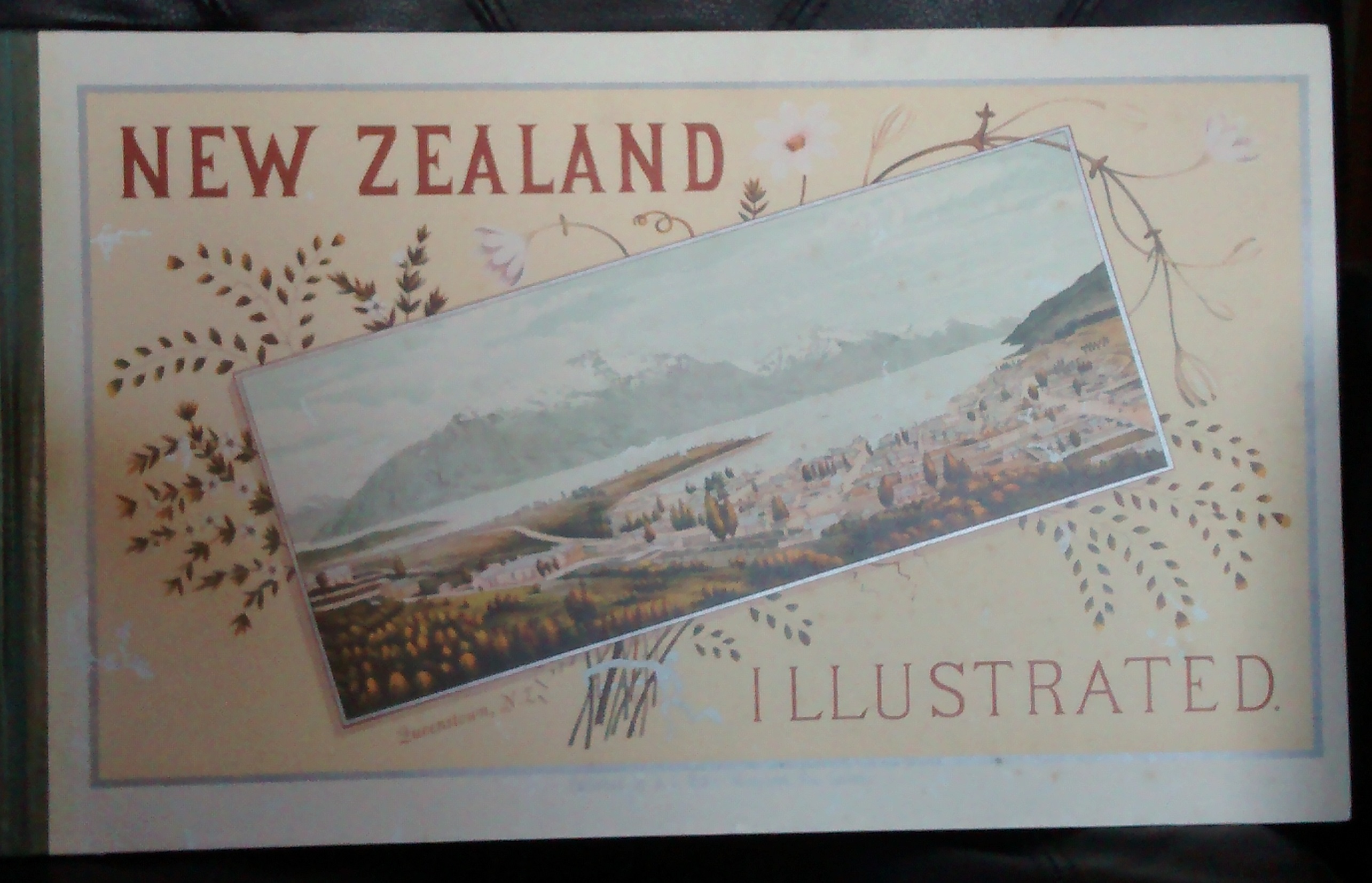 cover image of New Zealand Illustrated by Wakefield and Willis.