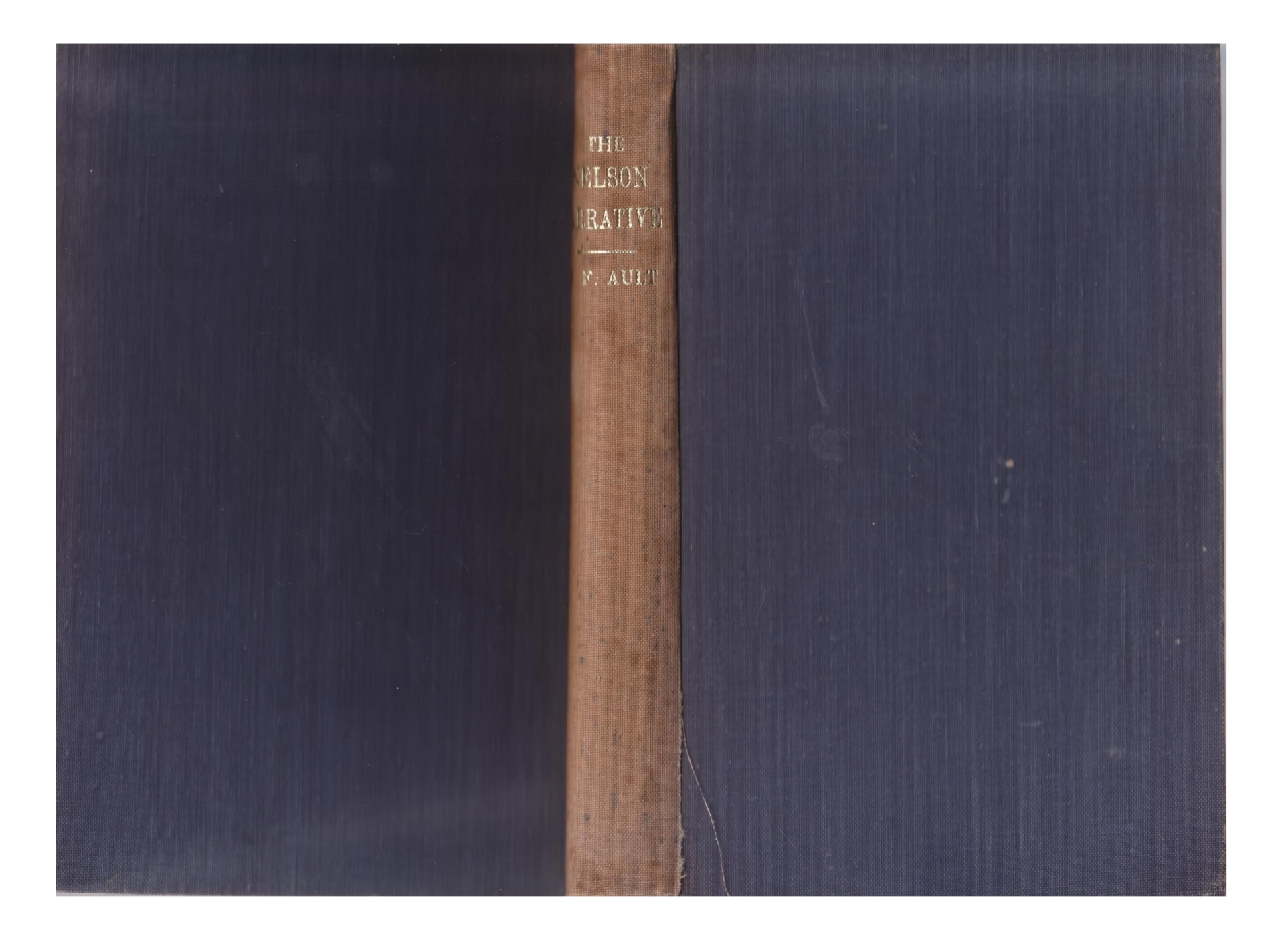 cover image of The Nelson Narrative for sale in New Zealand