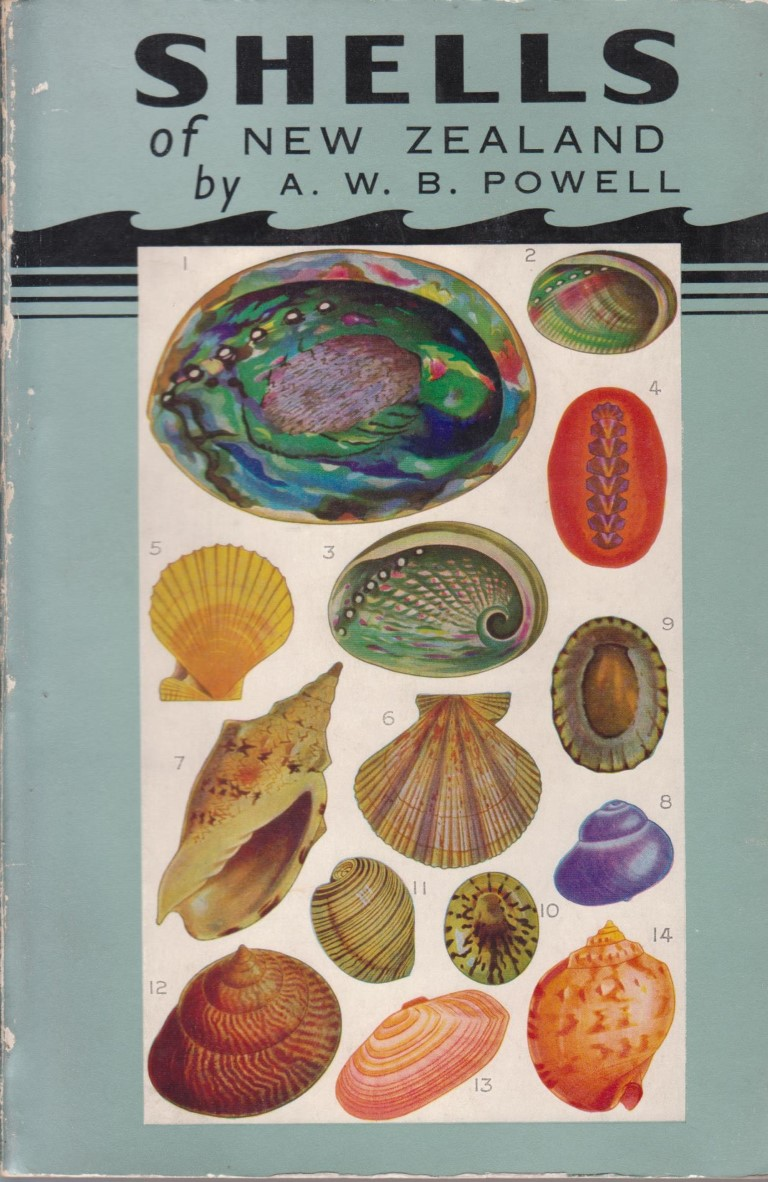 cover image of The Shells of New Zealand an illustrated handbook for sale in New Zealand