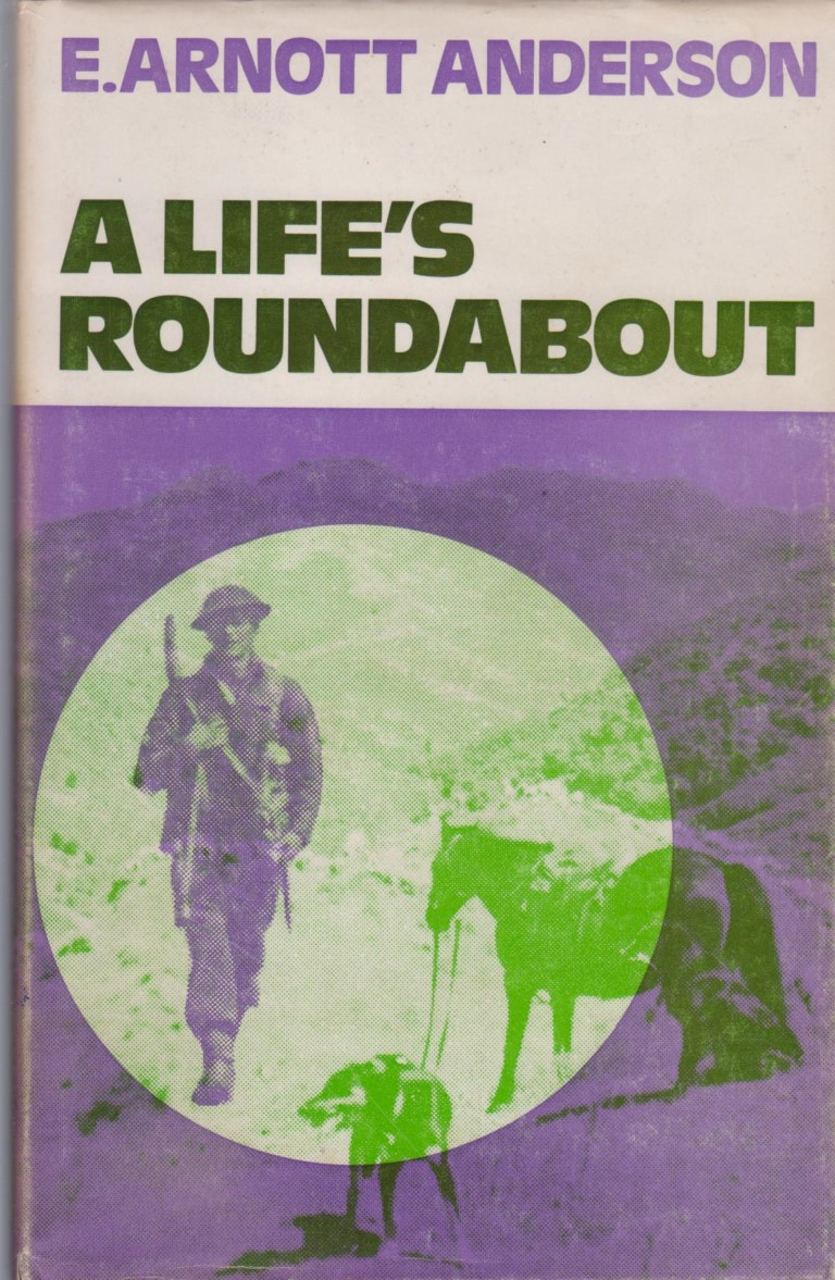 cover image of A Life's Roundabout, for sale in New Zealand