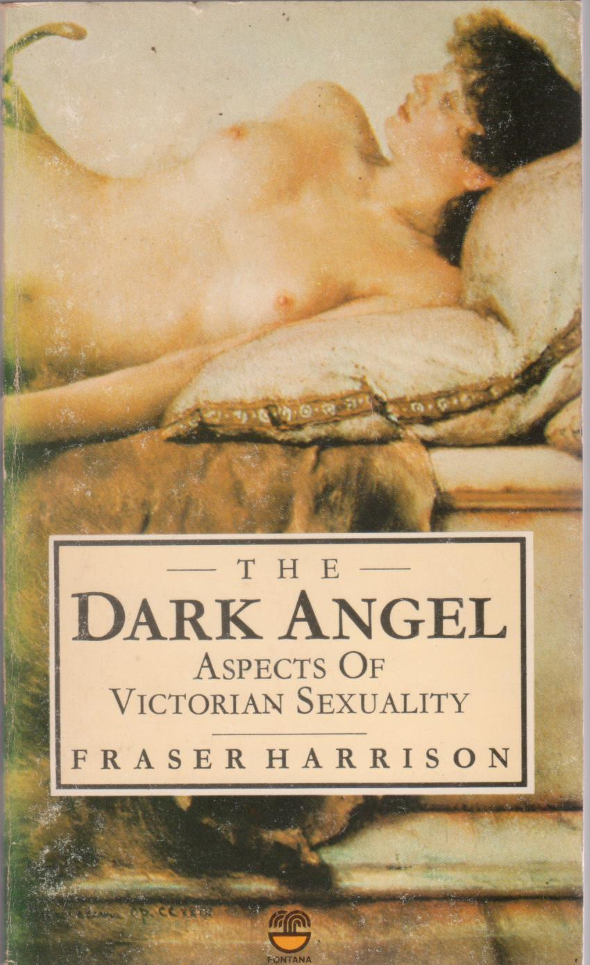 cover image of The Dark Angel, Aspects of Victorian Sexuality for sale in New Zealand