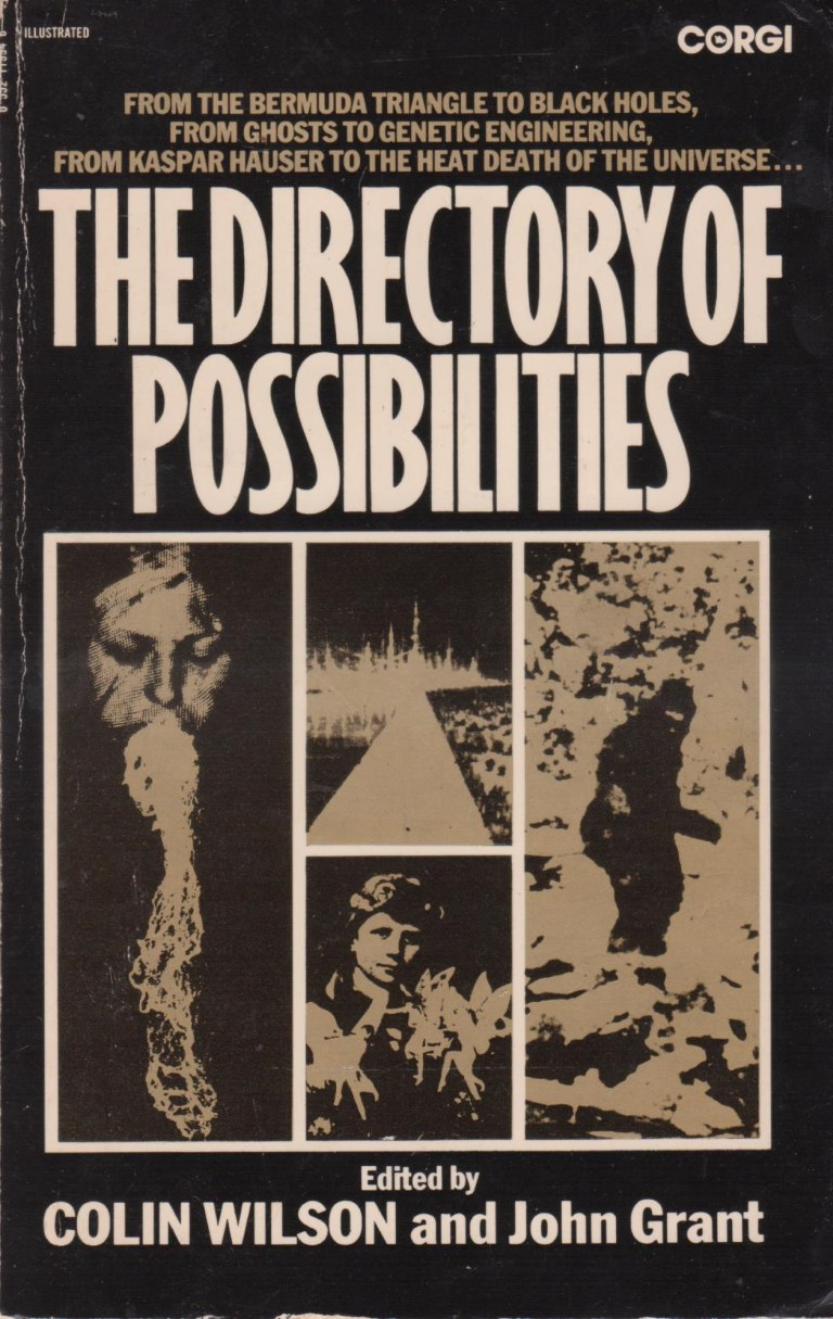 cover image of The Directory of Possibilities for sale in New Zealand