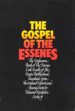 cover image of The Gospel of the Essenes for sale in New Zealand