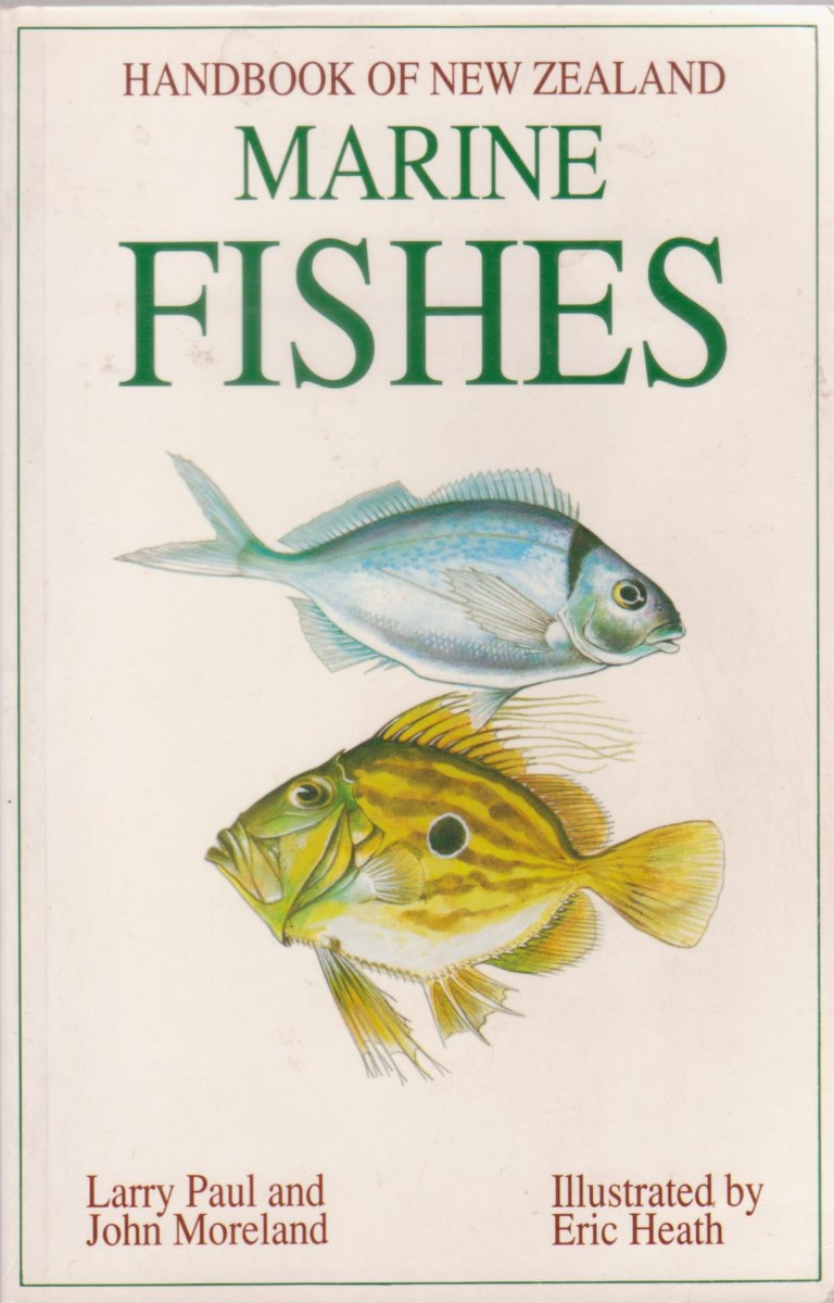 cover image of Handbook of New Zealand Marine Fishes for sale in New Zealand