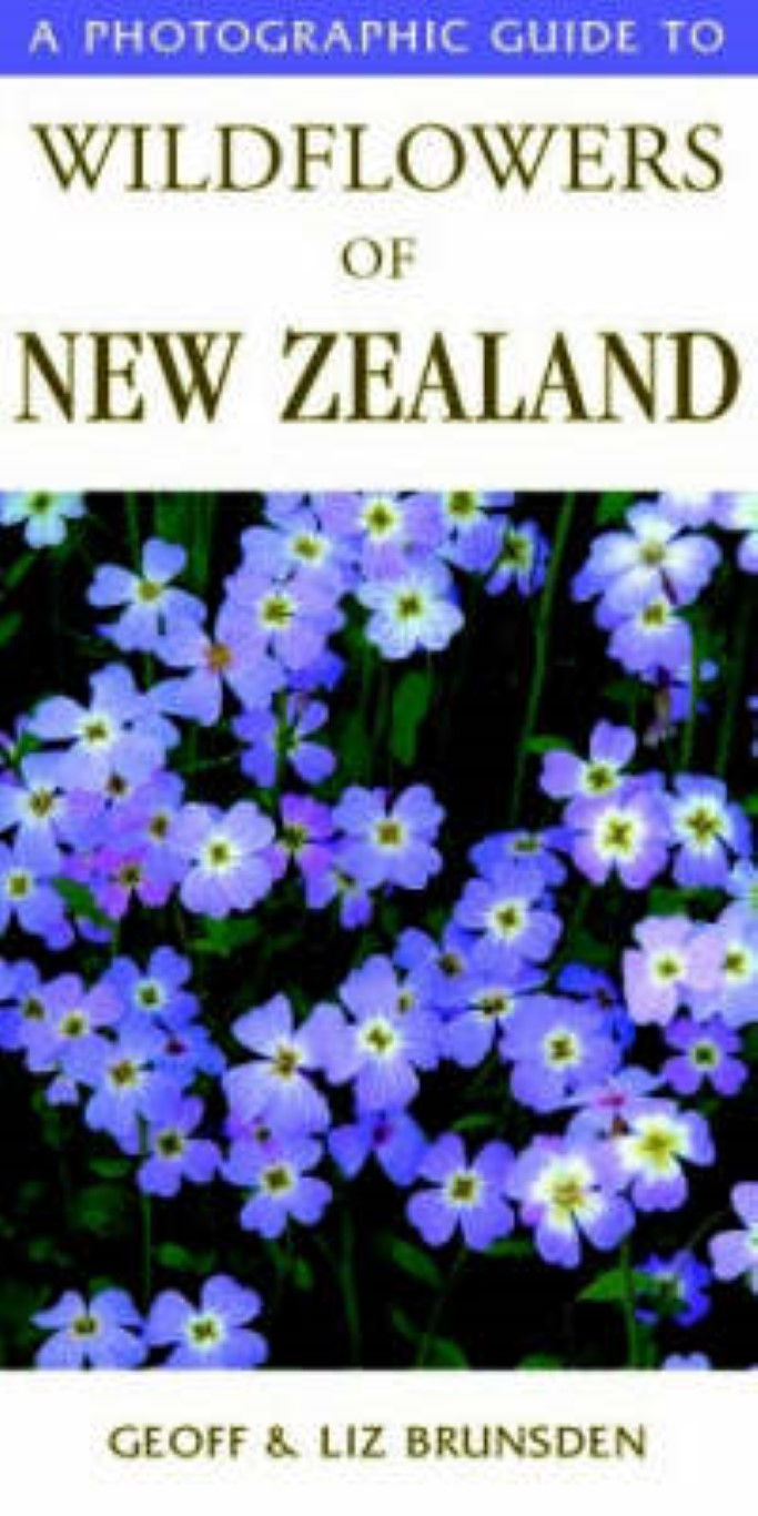 cover image of A Photographic Guide to Wildflowers of New Zealand for sale in New Zealand