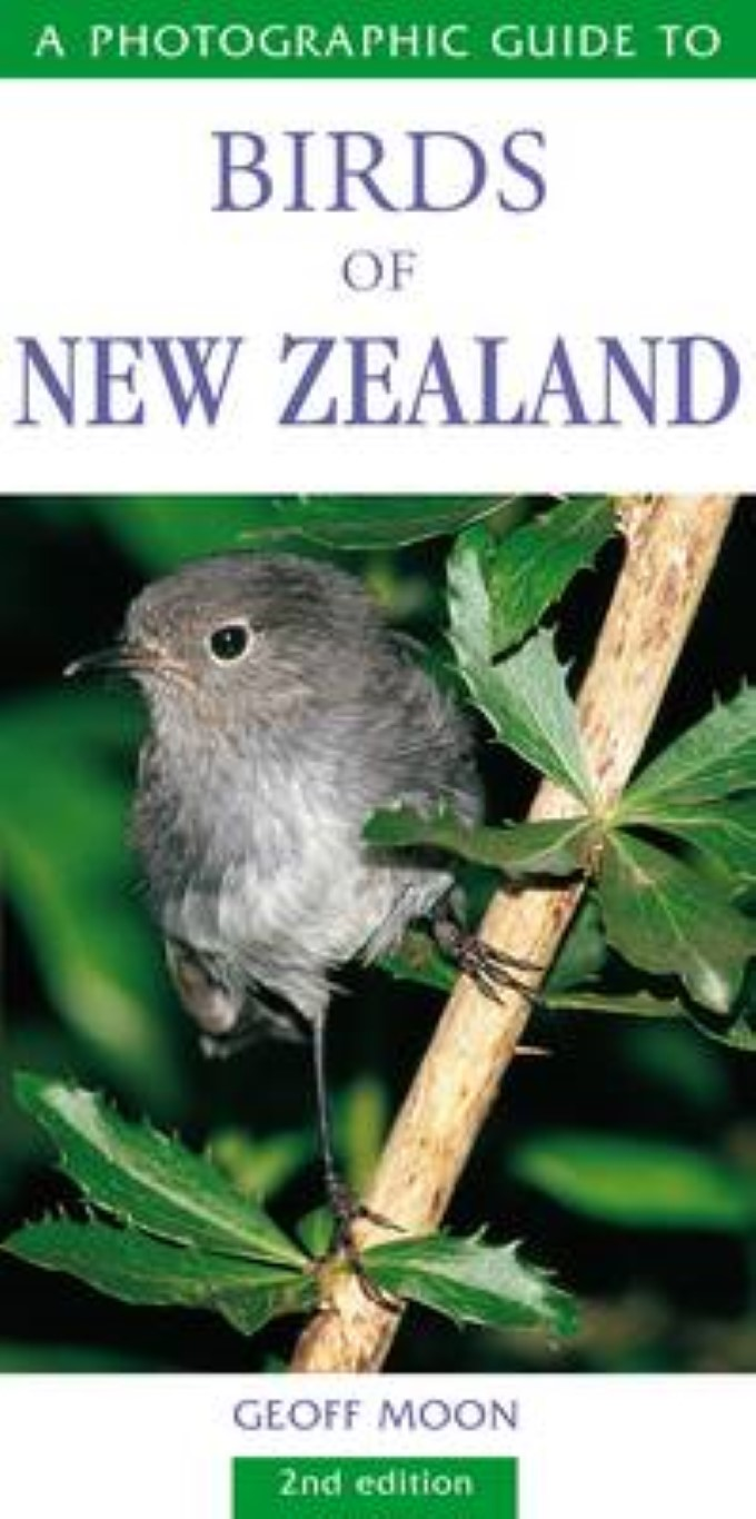 cover image of A Photographic Guide to Birds of New Zealand for sale in New Zealand