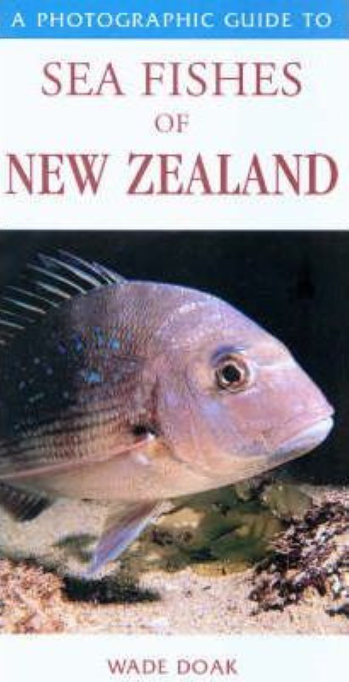 cover image of A Photographic Guide to the Sea Fishes of New Zealand for sale in New Zealand